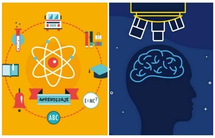 Otros 6 estilos de aprendizaje